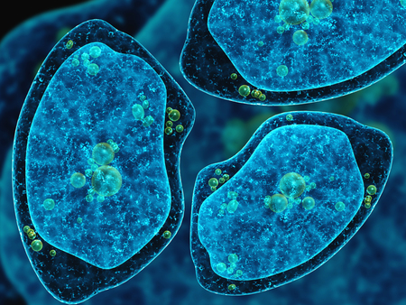ameba: Tres amebas sobre fondo azul oscuro abstracto. 3d