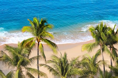 Palmbomen, oceaangolven en strand, Acapulco, Mexico, de Stille Oceaan