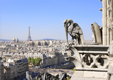 Gargoyle pelican overlooking Paris up on Notre Dame de Paris, Eiffel tower and river Seine, France, Europe Stock Photo