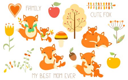 Collection of cute animal family. Fox with baby in different situation.