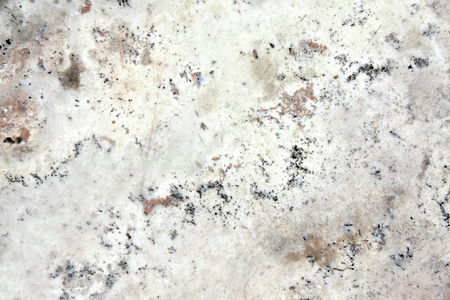 Texture of granite of light grey color