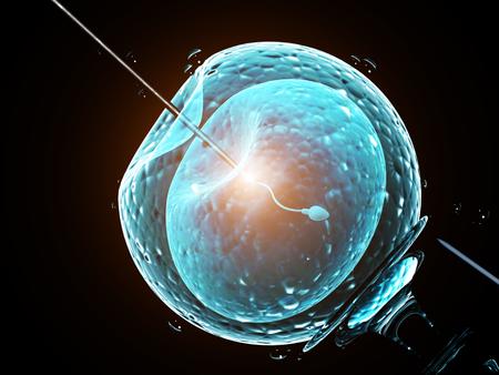 세포 주입 - 인공 수정. 바늘은 세포막에 구멍을 뚫습니다. 계란에 정자입니다. 검은 배경에 고립. 3 차원 렌더링 스톡 콘텐츠