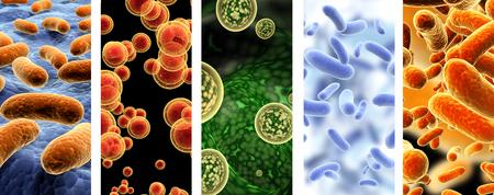 Sammlung von vertikalen Bannern mit pathogenen Bakterien und Viren. 3D-Rendering