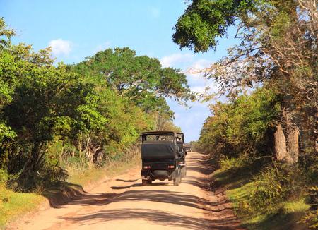 Car safari in Yala National Park. Tourists in cars on the dusty road. Sri Lanka