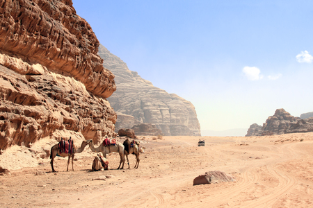 Car safari in Wadi Rum desert, Jordan. Camels and tourists in the car ride on off-road on sand among the beautiful rocks