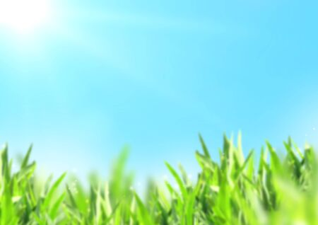 Nature blurred background with green grass and sunny blue sky. Mock up template. Copy space for text Zdjęcie Seryjne - 130146529