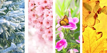 Four seasons of year. Set of vertical nature banners with winter, spring, summer and autumn scenes Banco de Imagens