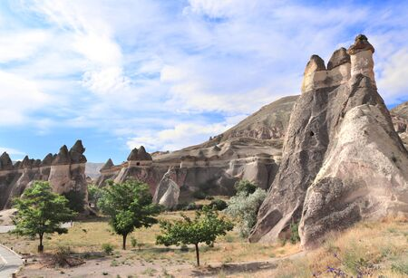 Fairy Chimney or Multihead stone mushrooms in Pasabag Valley, Cappadocia, Anatolia, Turkey 版權商用圖片