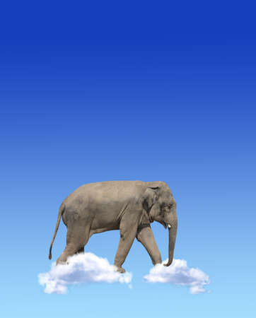 Vertical banner with elephant above clouds on blue sky background. Cute elephant in the sky. Fantastic scene with an elephant walking on the clouds. Mock up template. Copy space for text Stockfoto