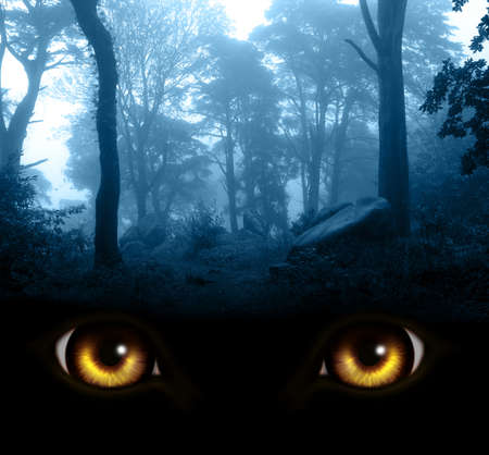 Burning yellow monster eyesl and mysterious landscape of foggy forest. Vertical fantasy background with misty landscape and werewolf eyes
