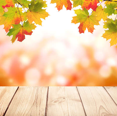 Old wooden desk with nature fall background. Vintage wooden table top and maple leaves on blurred autumn backdrop. Mock up template. Copy space for text Archivio Fotografico