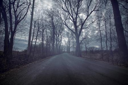 жуткий: Мрачный дорога Durring холодный и темный день осени