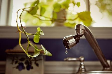 poco: Planta de Interior pidiendo poco de agua (gota)