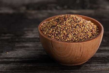 red clover: Close-up of Red Clover Sprouting Seeds in a Wooden bowl