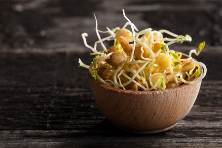 germinate: Close-up of Brown Lentils Sprouts in a Wooden bowl Stock Photo