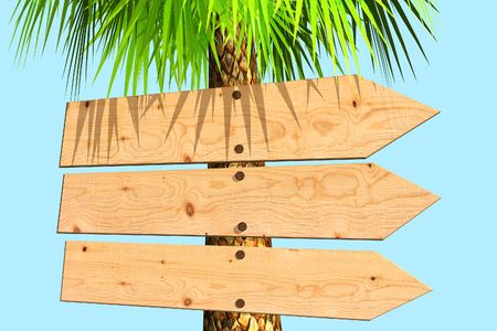 Wooden signboard on a palm tree. Isolated on blue photo