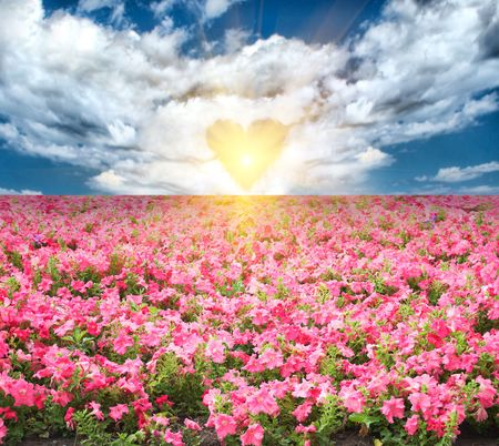 romantic summer landscape with pink flowers under blue skies