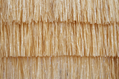 thatched roof: texture of straw roof