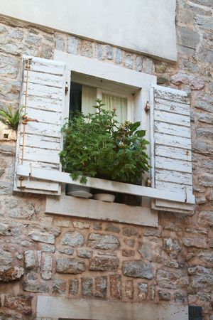 Window with shutters and a large plant in a pot on the ancient stone wall photo