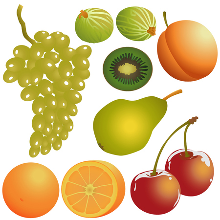 Set of fresh fruit Vector