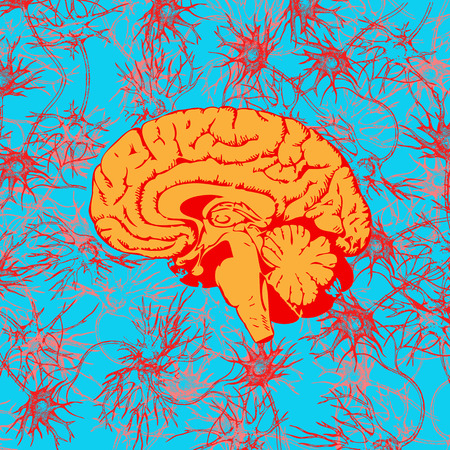 Human brain penetrated by neural communications Illustration