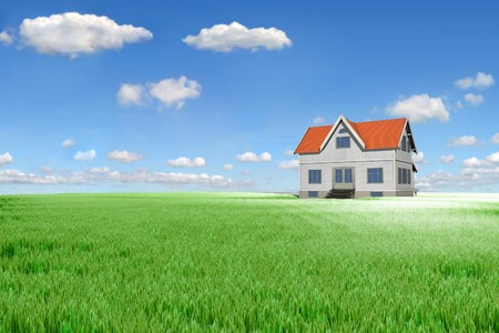 House on green meadow