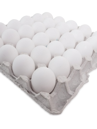 baking ingredients: Lot of white eggs in a row on a tray. Isolated on white
