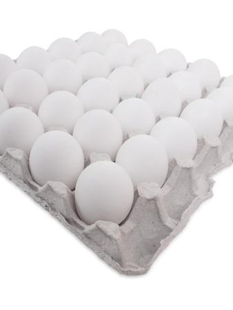 eier: Viele wei�e Eier in einer Zeile auf einem Tablett. Isolated on white