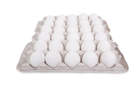 Lot of white eggs in a row on a tray. Isolated on white