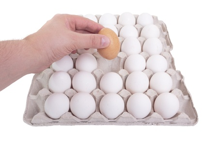 The concept of a correct choice. Hand of man chooses one egg out of thirty. Stock Photo - 9837808