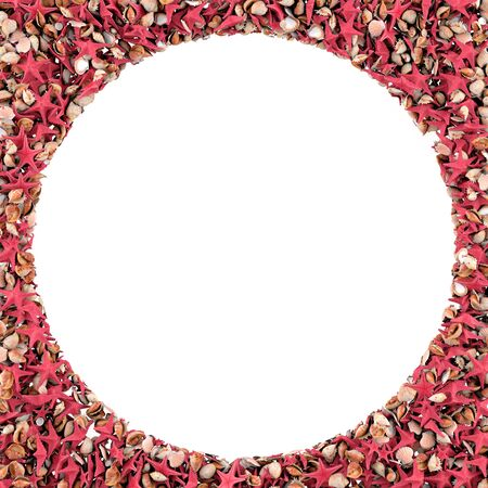 Round frame made of sea shells  Isolated on white  3d render photo