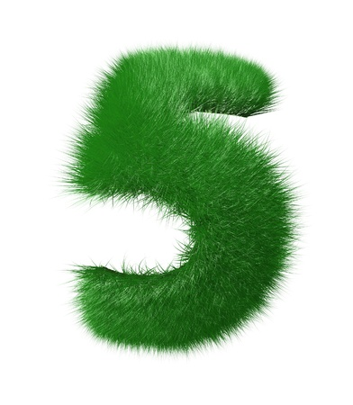 Number five made of grass  Isolated on white background photo