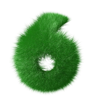 Number six made of grass  Isolated on white background photo