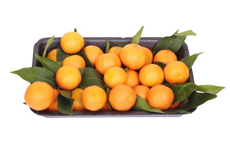 box with mandarins on white photo