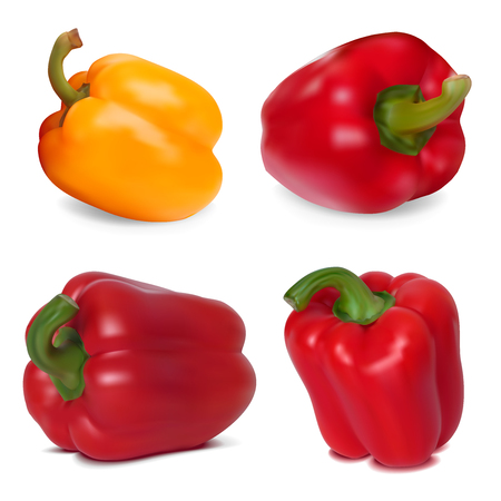 Photo-realistic vector  Set of Sweet Peppers Vector