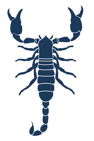 Scorpion tattoo. Vector illustration Vector