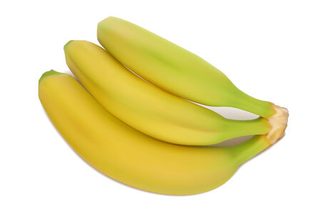 Yellow-green bananas  Vector