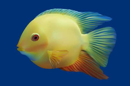 Golden tropical fish. Vector illustration Vector