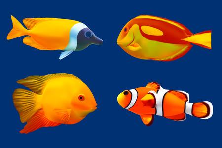 Set of tropical fish illustration Vector