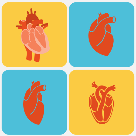 Cardiology Heart icon