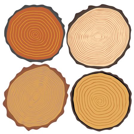 Textura y elementos de madera aisladas. Ilustración vectorial