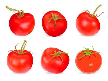 Set of Realistic red Tomatos. Vector illustration. Isolated on white background Illustration