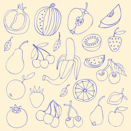 Set Sketches of fruit, isolated, vector illustration. Vector