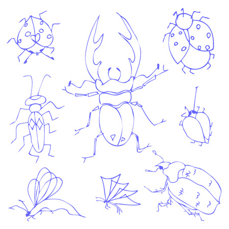 Insects sketch decorative icons set with dragonfly fly butterfly isolated vector illustration Vector
