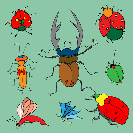 Set of colorful bugs. Drawing of beetles. Insect on the green background. Cartoon bug illustration. Vector