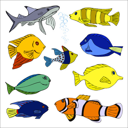 zanclus cornutus: Set of tropical fish. Vector illustration Illustration