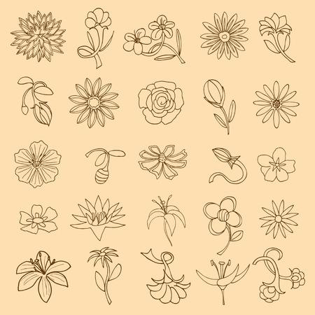 flor aislada: Conjunto de flor aislado. Ilustraci�n vectorial