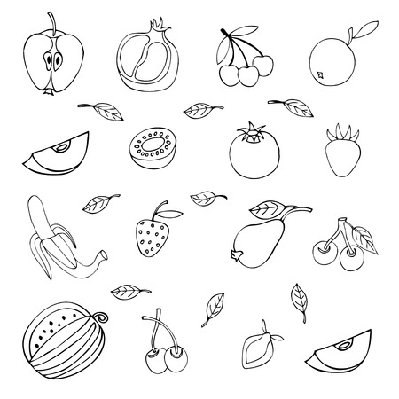 set of different fruits isolated on white background Vector