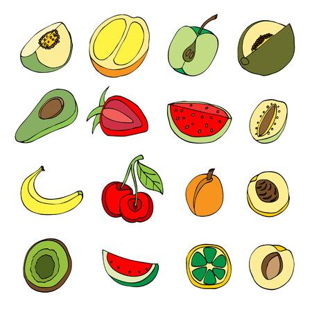 custard: Vector illustration of many fruits, doodle style