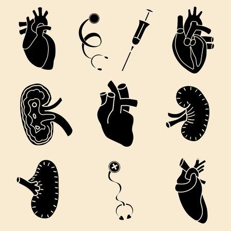 set flat human orgset flat human organs icons illustration concept. Vector background designans icons illustration concept. Vector background design Vector
